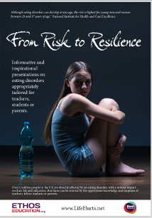 From Risk to Resilience brochure graphic 1